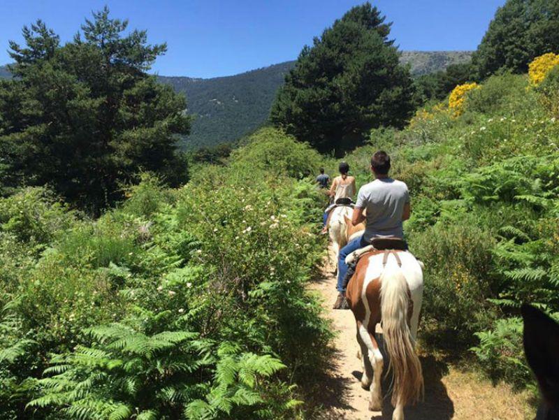 Excursión escolar a Camorritos Cercedilla, Madrid: Paseo a caballo