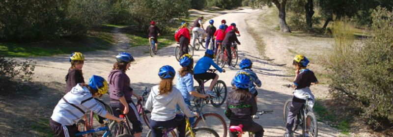 Excursión escolar a Pinar de Valdelatas, Madrid