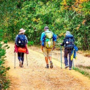 Camino de Santiago Francés en grupo