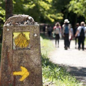 ¿Por qué hacer el Camino de Santiago?